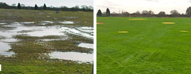 Horne Park - Before & After